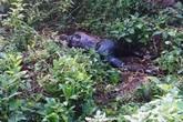 Lạng Sơn: Rùng mình phát hiện thi thể người phụ nữ gần chùa Bắc Nga