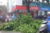 Tin mới nhất về bão Mun: Đã có người tử vong, một người may mắn sống trong tình huống vô cùng hi hữu