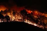 Rừng thông ở Hà Tĩnh cháy rực trong đêm, hàng trăm người dân phải sơ tán