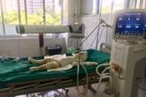 Vụ chém rồi thiêu sống cả nhà người tình ở Sơn La: Bé gái 2 tuổi đã tử vong