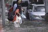 Chủ tịch UBND TP Hà Nội ra công điện khẩn phòng, chống bão số 3