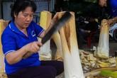 Bán củ hủ dừa lãi hơn 50 triệu đồng mỗi tháng