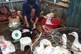 Ngay giữa Thủ đô, nhiều khu chợ bất chấp lệnh cấm