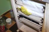 Kinh hãi con trai giết mẹ 83 tuổi rồi giấu xác trong ngăn đông tủ lạnh