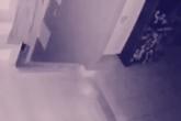 Chủ nhà phát hiện 'hồn ma' của em bé và thú cưng qua camera