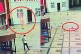 Thanh niên 'số nhọ' nhất năm: Đứng nghịch điện thoại, bị người phụ nữ nhảy lầu tự tử rơi trúng