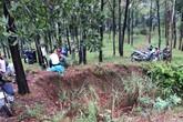 Phát hiện thi thể người đàn ông quê Hải Dương tại rừng thông sau nhiều ngày mất tích