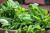 Những điều cấm kỵ khi ăn rau ngót