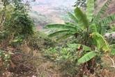 Sơn La: Ô tô lao xuống vực sâu 400m, 2 bố con thương vong