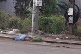 Thiếu nữ mang xác mẹ nuôi để ngoài bãi rác đối diện hình phạt nào?
