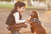Cách nuôi dưỡng tình yêu động vật ở trẻ