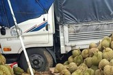 Xe tải tông tử vong một phụ nữ đang đi bộ, người thân ôm thi thể gào khóc thảm thiết
