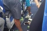 Bamboo Airways lên tiếng sau sự cố nhiễu động không khí đột ngột