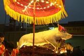 """Đầu xuân đi xem lễ rước """"ông lợn"""" đặc biệt ở La Phù"""