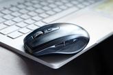 Năm Tý, sắm chuột mới nào cho máy tính?