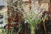 Cách cắm bình hoa bướm và violet cho Tết, bộ đôi hoa dành cho ai thích vẻ đẹp tinh khôi