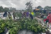 Nhiều cây xanh gãy đổ chắn ngang trên quốc lộ 1 ở Thừa Thiên - Huế do bão số 9