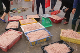 """Đầu xuân ra biển vớt """"lộc trời"""", ngư dân Hà Tĩnh thu tiền triệu mỗi ngày"""