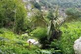 Huyện Như Thanh, Thanh Hóa: Lo núi lở, người dân sống trong sợ hãi