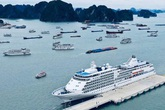 Quảng Ninh: Không cho hành khách, thuyền viên lên bờ khi đi qua các vùng dịch