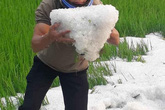 Mưa đá phủ trắng ruộng vườn ở Điện Biên, Sơn La, Hòa Bình