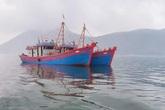 Hà Tĩnh: Nổ súng truy bắt 2 tàu cá đánh bắt trái phép trên biển