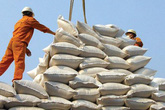 Chính thức tạm dừng ký hợp đồng xuất khẩu gạo để đảm bảo nguồn cung trong nước đang ảnh hưởng bởi dịch COVID-19