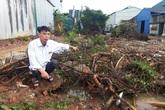 Hà Nội: Vườn cây cảnh trị giá gần nửa tỷ đồng bị phá hủy trong đêm