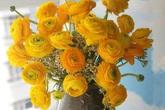 """Muôn kiểu cắm hoa mao lương đẹp """"không đụng hàng"""", nhà mẹ Việt rực sắc đón ngày 8/3"""