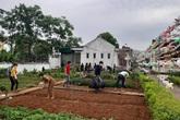 Hà Tĩnh: Hàng trăm người cách ly làm vườn rau tri ân trường mầm non