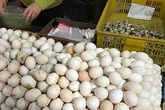 Trứng gà Việt Nam rớt giá chưa từng có, trái ngược với giá trứng tăng nhanh như giá vàng ở Mỹ
