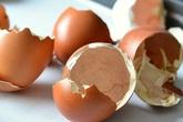 Biết được 5 công dụng này của vỏ trứng bạn sẽ không nỡ vứt chúng đi nữa