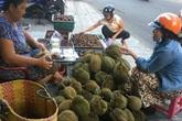 'Vua của các loại trái cây' đại hạ giá ở vỉa hè Sài Gòn, vì sao?