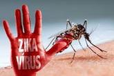 """Nam thanh niên bất ngờ mắc virus Zika """"hẹn tái khám nhưng không quay lại"""""""