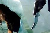 Hà Giang: Chồng sát hại vợ rồi treo cổ tự tử
