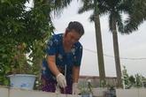 Gạt bỏ mọi đàm tiếu ác ý, người phụ nữ ở Hà Nội vẫn nhặt hàng vạn xác thai nhi về chôn ở ruộng nhà mình