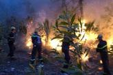 Hàng ngàn người dân Nghệ An nhiều ngày thức trắng, căng mình cứu rừng giữa biển lửa
