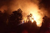 Liên tiếp cháy rừng ở Nghệ An