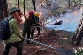 Nghi có yếu tố phá hoại khiến cháy rừng liên tiếp ở Nghệ An, triệu tập một số đối tượng