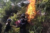 Xúc động hình ảnh hàng trăm chiến sỹ mồ hôi mặn chát, rã rời giữa biển lửa cứu rừng