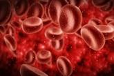Tại sao Lipidcleanz giúp hạ mỡ máu an toàn, hiệu quả?