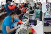 Đồng Tháp: Những mô hình hiệu quả gia tăng cơ hội việc làm cho người lao động
