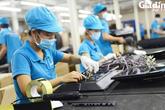 Hải Phòng: Gia tăng cơ hội nghề nghiệp cho người lao động
