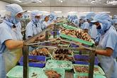 Phú Yên: Triển khai đồng bộ nhiều biện pháp nhằm đảm bảo việc làm bền vững cho người lao động