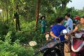 Thái Nguyên: Xác định nguyên nhân người đàn ông tử vong trong bụi rậm
