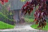 Thâm cung bí sử (218 - 4): Lai rai mưa ngâu