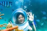 Vé khứ hồi đi Phú Quốc giảm còn hơn 1 triệu đồng