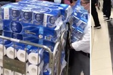 Chuyện lạ thời nay, giấy vệ sinh quý hơn cả hàng hiệu
