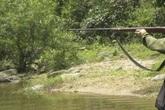 Đạn xuyên từ bụng lên vùng ngực, thanh niên chết giữa rừng ở Bình Định