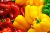 Ăn ớt chuông vừa ngon miệng lại vừa cung cấp vô số lợi ích ai cũng nên thử